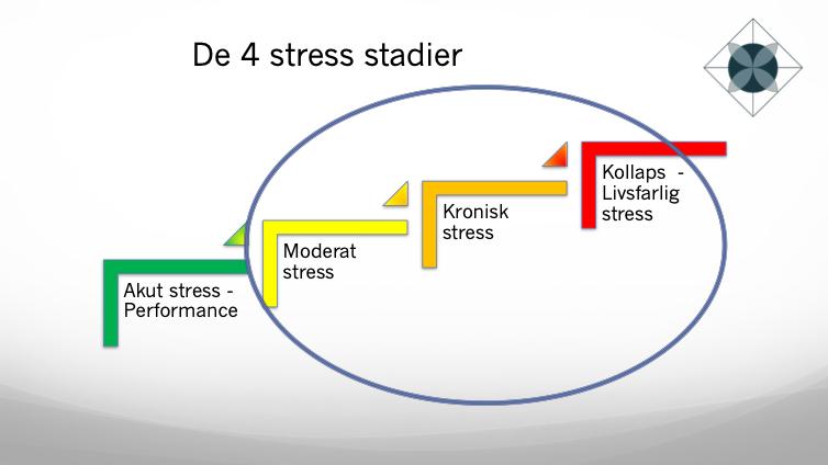 4 stressstadier; akut stressperformance, moderat stress, kronisk stress, kollaps - livsfarlig stress